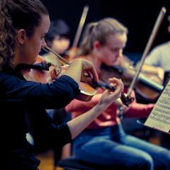 Pulse Chamber Orchestra. Photo: Adam McNamara